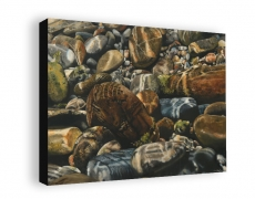 """""""Wayside"""" Gallery Wrapped Print"""